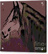 Vash The Stampede Acrylic Print
