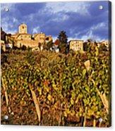 Vineyards Acrylic Print by Jeremy Woodhouse