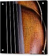 Violin Isolated On Black Acrylic Print