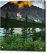 Waterfowl Lake Acrylic Print