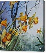 Welcome Springtime Acrylic Print by Patsy Sharpe