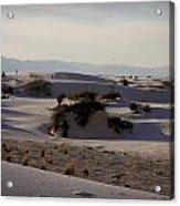 White Sands 1 Acrylic Print