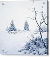 Winter On The Moor Acrylic Print