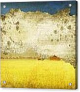 Yellow Field On Old Grunge Paper Acrylic Print