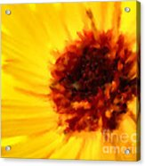 Yellow Floral 01 Acrylic Print