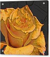 Yellow Rose Art Acrylic Print