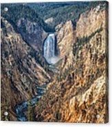 Yellowstone Lower Falls Acrylic Print
