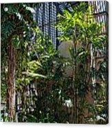 Balboa Park San Diego Acrylic Print