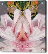 Hibiscus Mystery Acrylic Print