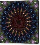 10 Minute Art 120611a Acrylic Print