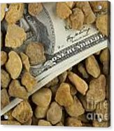 Money Acrylic Print by Blink Images