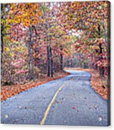 1010-4486 Petit Jean Autumn Highway Acrylic Print by Randy Forrester