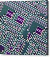 Microchip, Light Micrograph Acrylic Print