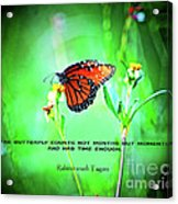 14- The Butterfly Acrylic Print