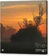 Sunset Acrylic Print by Odon Czintos