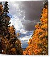 Rocky Mountain Fall Acrylic Print