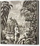 1731 Scheuchzer Creation Adam & Eve Acrylic Print by Paul D Stewart