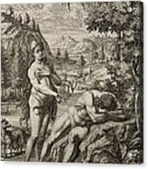 1731 Scheuchzer Creation Adam's Rib & Eve Acrylic Print by Paul D Stewart