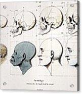1760a Petrus Camper Facial Angle Eugenics Acrylic Print