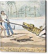 1826 Naturalist Charles Waterton & Caiman Acrylic Print