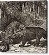 1863 Figuier Iguanodon And Megalosaurus Acrylic Print