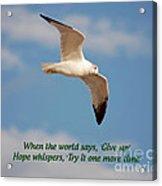19- Hope Whispers Acrylic Print