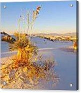 White Sands Acrylic Print