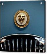 1952 Jaguar Hood Ornament Acrylic Print by Sebastian Musial