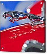 1961 Jaguar Kougar Hood Ornament 2 Acrylic Print