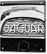 1963 Jaguar Back Up Light Acrylic Print