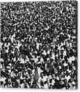 1963 March On Washington. Crowd Acrylic Print by Everett