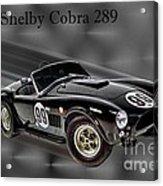 1963 Shelby Cobra 289 Acrylic Print
