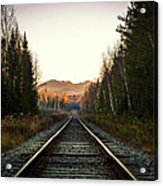 Adirondack Tracks Acrylic Print