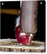 Apple Smashed With Mallet Acrylic Print