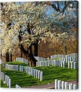 Arlington National Cemetary Acrylic Print