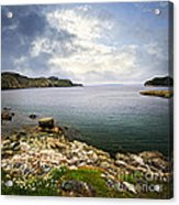 Atlantic Coast In Newfoundland Acrylic Print