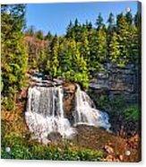 Blackwater Falls Sp Acrylic Print
