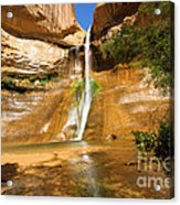 Calf Creek Falls Canyon Acrylic Print