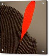 Cedar Waxwing Feather Acrylic Print