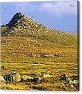 Dingle Peninsula, Co Kerry, Ireland Acrylic Print