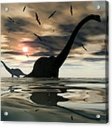 Diplodocus Dinosaurs Bathe In A Large Acrylic Print