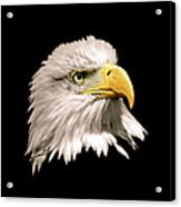 Eagle Profile Front Acrylic Print