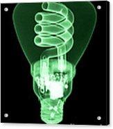 Energy Efficient Light Bulb Acrylic Print