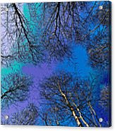 Epping Forest Art Acrylic Print