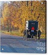 Fall Buggy Acrylic Print