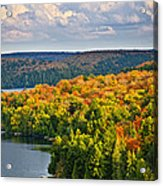 Fall Forest And Lake Acrylic Print