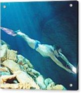 Free-diver Acrylic Print