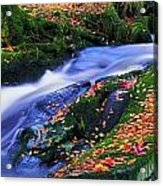 Glenmacnass Waterfall, Co Wicklow Acrylic Print by The Irish Image Collection