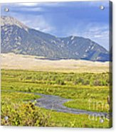 Great Sand Dunes Bison Acrylic Print
