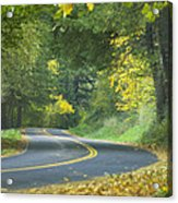 Historic Columbia River Highway Acrylic Print by Alan Majchrowicz